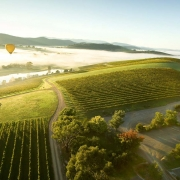 5 Things to Do in the Yarra Valley this Autumn
